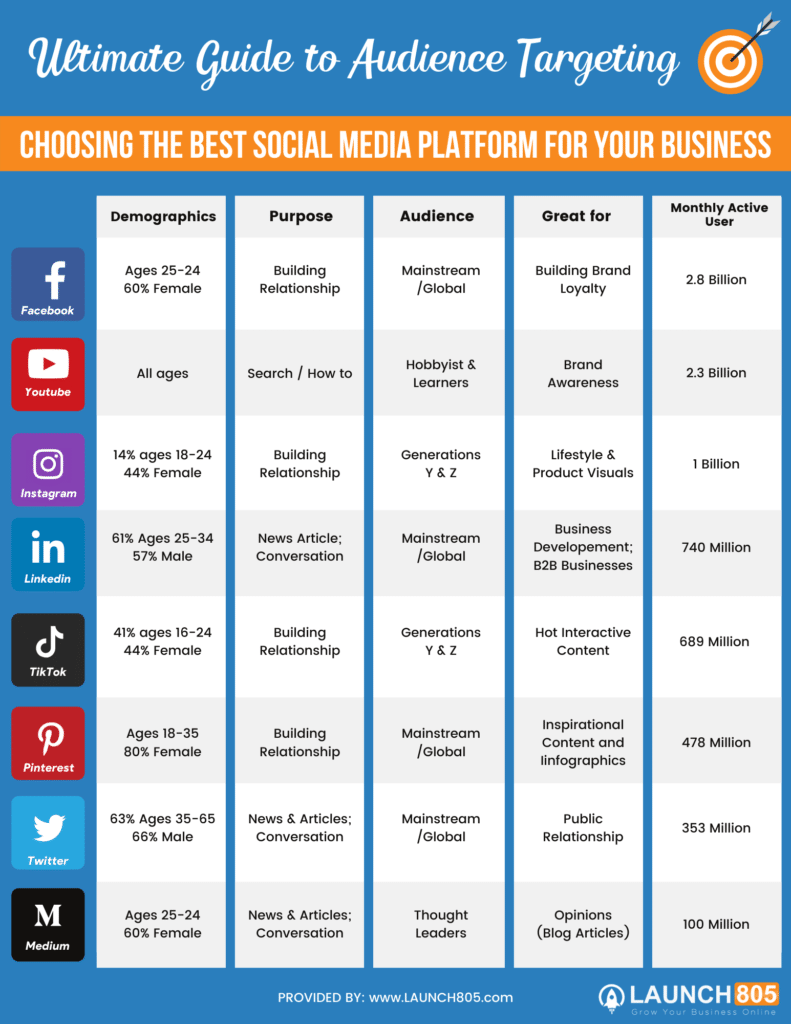 Social Media Audiences Infographic